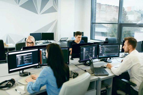 Developer Programmer Job